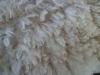 ht-fleece-shorn