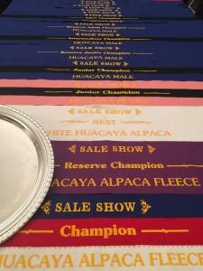 Sale Show 2015