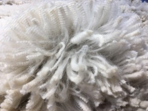 Lima fleece